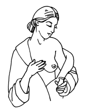 Регулярно смазывайте кожу маслом или специальным кремом и массируйте грудь.