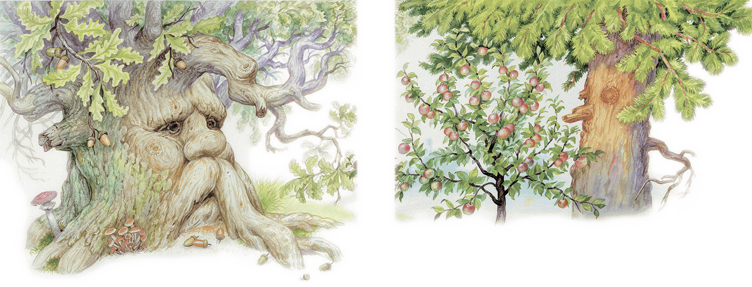 Двадцать первая иллюстрация к книге спор деревьев - константин ушинский