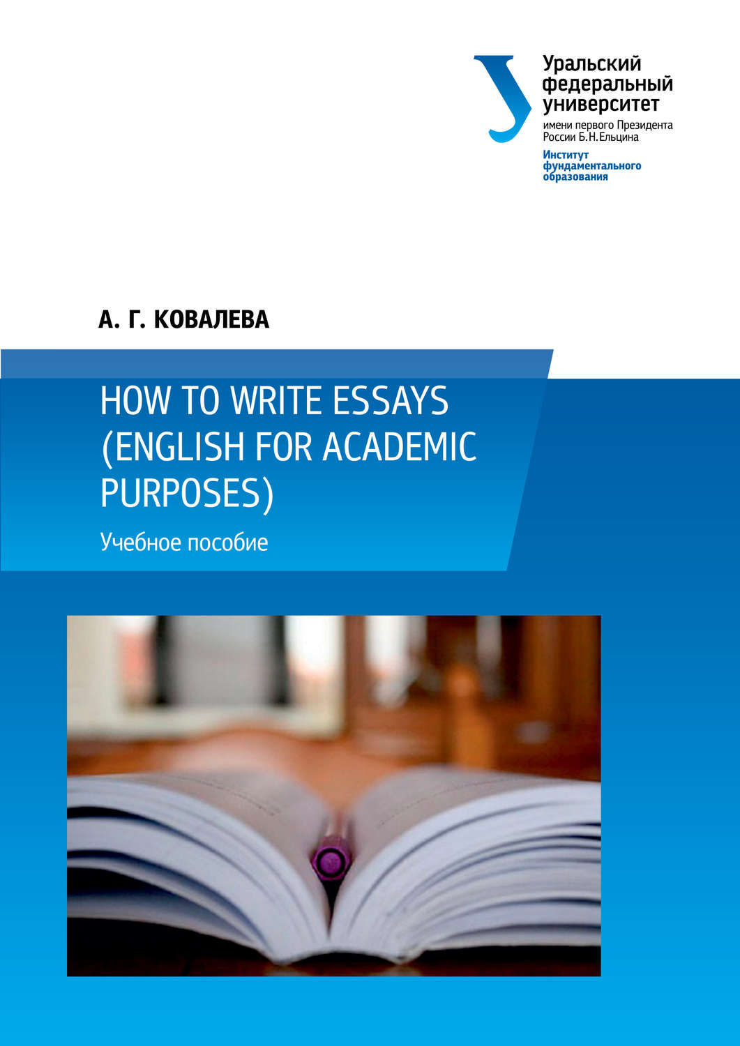 english essay writing books