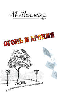 Огонь и агония - Михаил Веллер